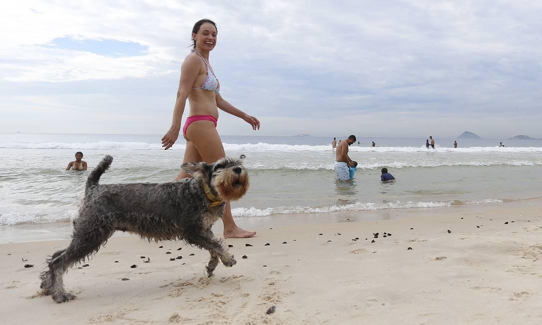 """Lei que permitiu a presença de cães nas praias da cidade """"passa por adequação dentro das normas de conservação e meio ambiente"""" Foto: Márcio Alves / Agência O Globo"""