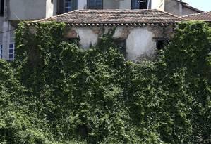 Uma construção na Gamboa, na Zona Portuária, tem quase toda a parede tomada por vegetação: há sinais de degradação do prédio Foto: Custódio Coimbra / Agência O Globo