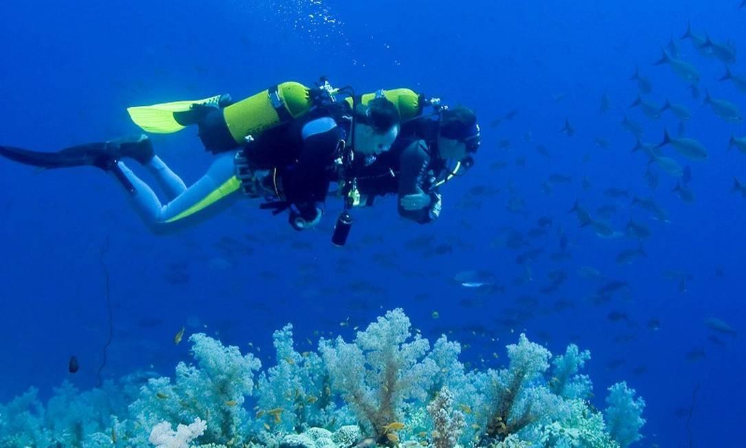 O mergulho é uma das atividades populares na região de Palm Beaches, na Flórida Foto: Divulgação