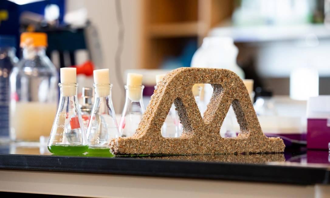 As cianobactérias são mantidas vivas na mistura de areia com hidrogel Foto: College of Engineering and Applied Science at Colorado University Boulder