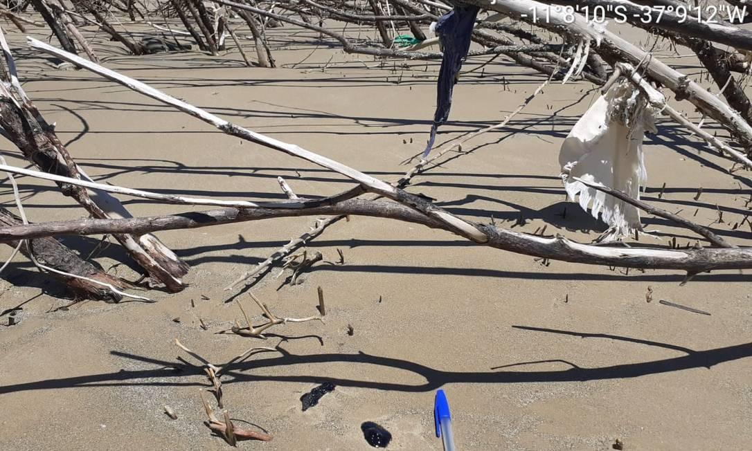 Derramento: resíduo de óleo no litoral do Sergipe Foto: Adema / Sergipe