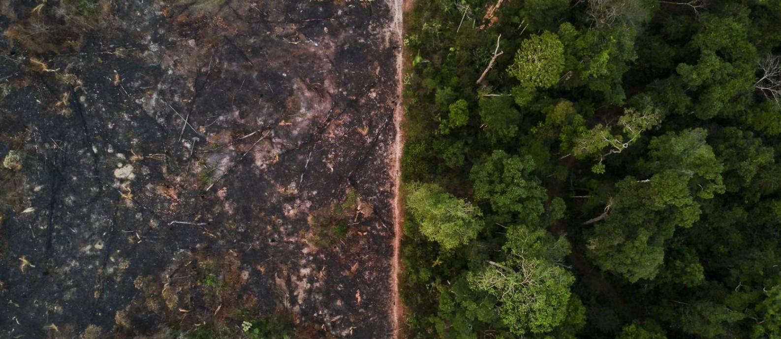 Queimadas próximo a reserva indígena Uru-Eu-Wau-Wau, em Rondônia Foto: Gabriel Monteiro / Agência O Globo