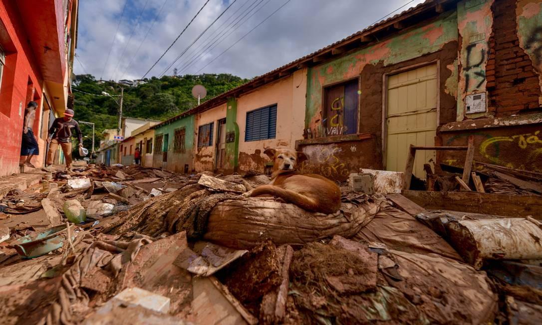 Em boletim oficial divulgado na segunda-feira, são 14.609 pessoas desalojadas e 3.386 desabrigadas. A chuva também deixou 65 feridos – além de matar 47 Foto: Fred Magno / O Tempo / via Agência O Globo