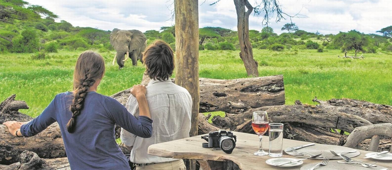 Turistas observam um elefante nos arredores de um camp no Quênia, um dos países africanos que se destacam nos safáris sustentáveis Foto: Andrew Howard / Divulgação