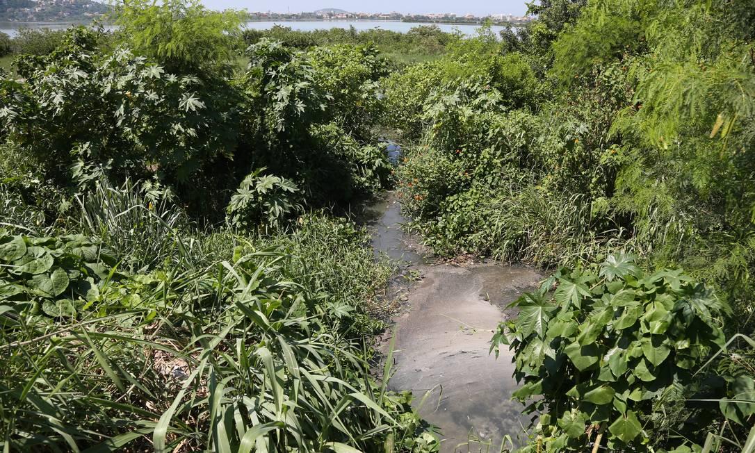 Despejo irregular de esgoto foi encontrado há uma semana na foz do Rio Cafubá, que desemboca na Lagoa de Piratininga, em Niterói Foto: Pedro Teixeira / O Globo
