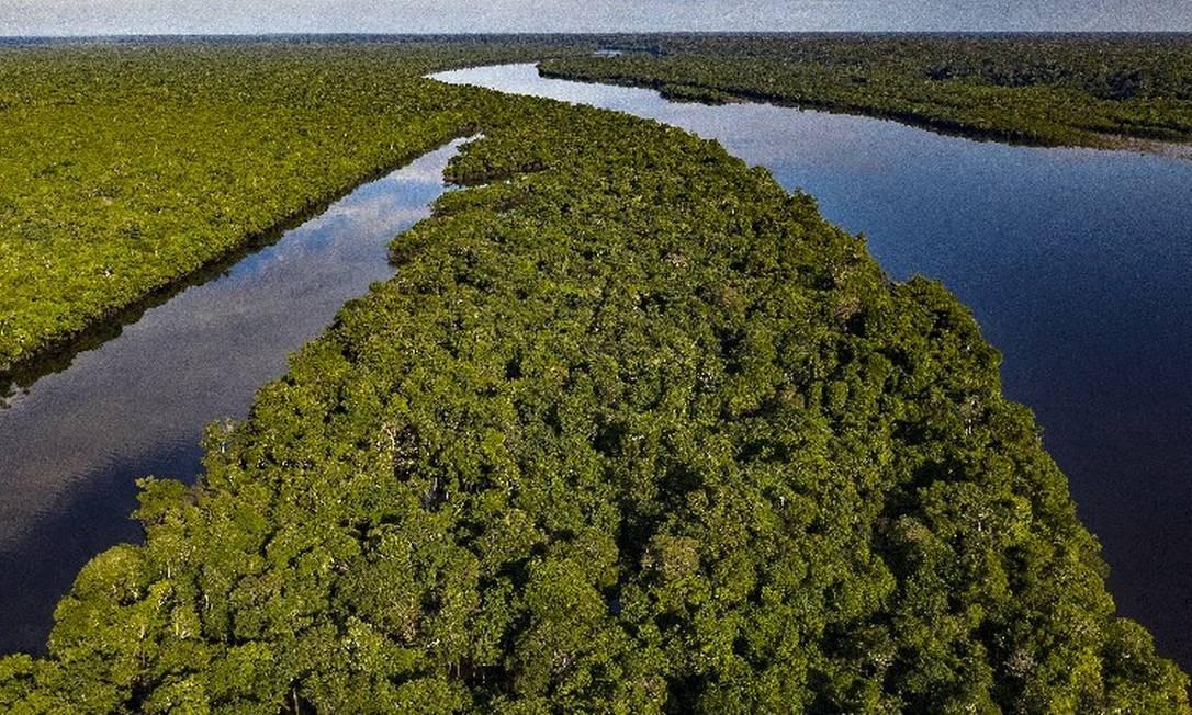 Rio Tapauá, próximo da aldeia patauá, na Amazônia: unidades de conservação da região são as mais atingidas por nova portaria Foto: Marizilda Cruppe