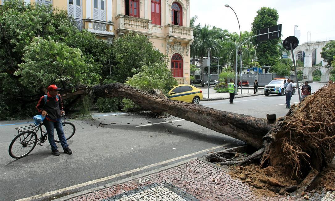 Um grande árvore caiu sobre um táxi na Avenida Mem de Sá, próximo aos Arcos, na Lapa, na manhã desta quinta-feira. Não houve feridos no acidente Foto: Gabriel de Paiva / Agência O Globo