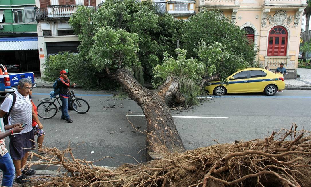 Queda da árvore, que ocorreu após o rompimento de uma tubulação subterrânea de água, causou a interrupção do trânsito na via no sentido Tijuca Foto: Gabriel de Paiva / Agência O Globo