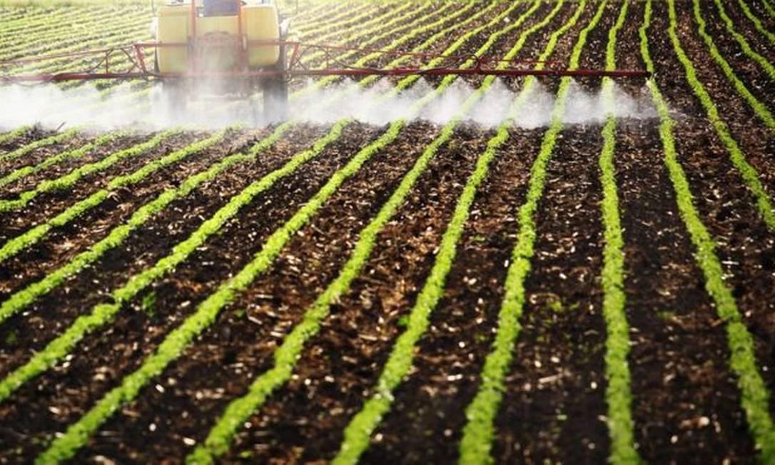 Aplicação de agrotóxicos em plantação Foto: GETTY IMAGES