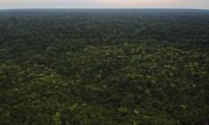 Programa de concessões do governo federal afora inclui florestas Foto: Gabriel Monteiro / Agência O Globo