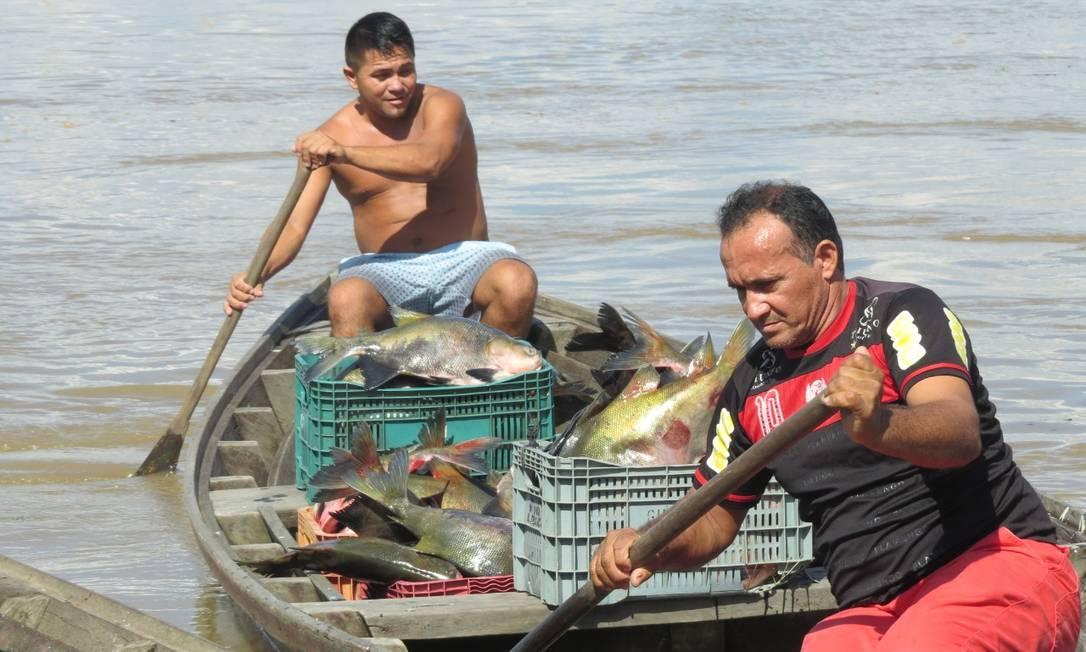 Pescadores na margem do rio Madeira, Amazonas Foto: Rangel Santos