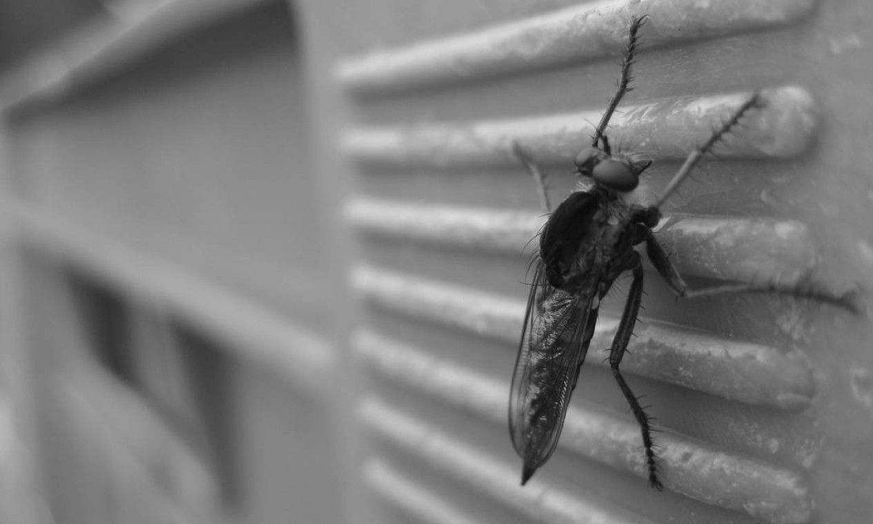 """O repelente aerossol foi inventado em 1941 por dois cientistas do Departamento de Agricultura dos EUA para soldados que lutavam no front do Pacífico, infestado de mosquitos. Na época, foi apelidado de """"bomba contra insetos"""" pelas tropas. Foto: Pixabay"""