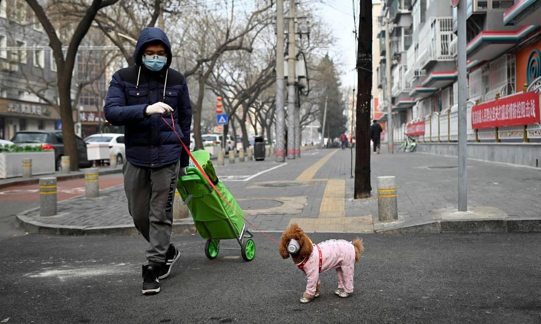 Um homem passeia com seu cachorro, ambos usando máscaras contra o coronavírus, em Pequim, na China; caso de animal contaminado em Hong Kong disparou medidas de segurança Foto: STR / AFP