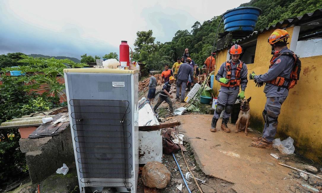 Bombeiros contam com auxílio de cães farejadores para encontrar vítimas Foto: Guilherme Dionizio / AFP