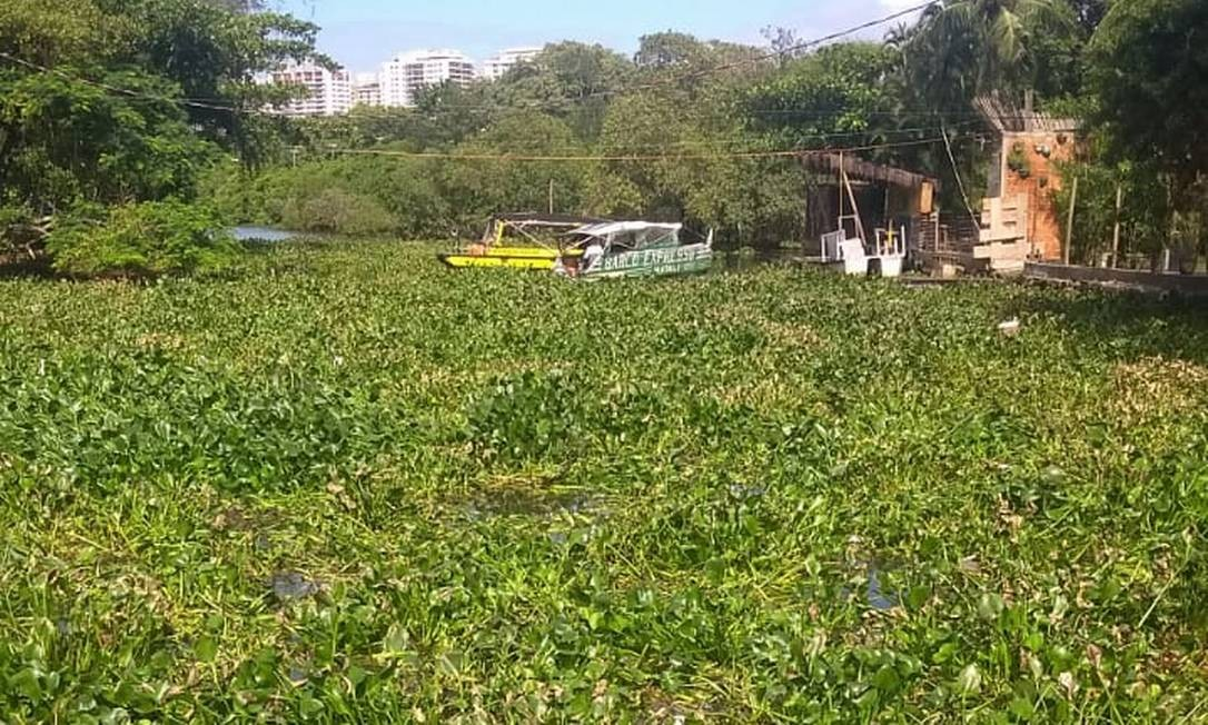 Sem ter como navegar, serviço de transporte com barcas foi paralisado na manhã desta sexta-feira no Canal de Marapendi Foto: Divulgação