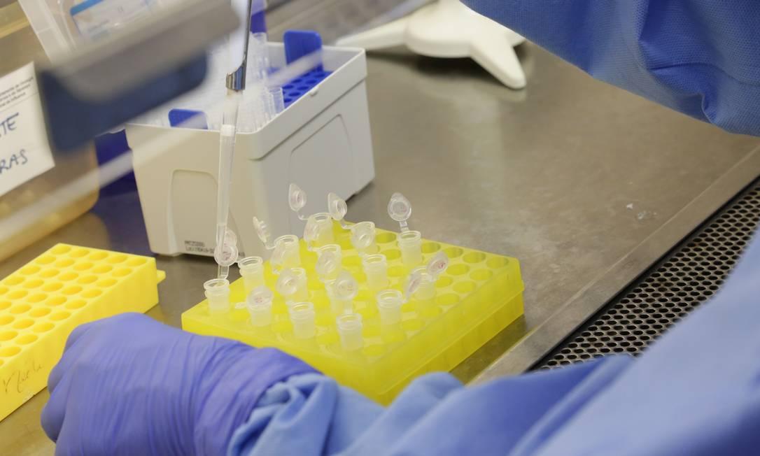 Laboratório de diagnóstico para coronavírus na Fiocruz Foto: Josué Damacena / IOC/Fiocruz