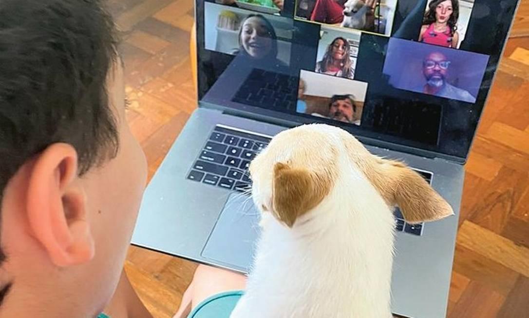 Por vídeo, Daniel Palatnik apresenta o cão Pipo a seus colegas da Escola Sá Pereira, em Botafogo Foto: Arquivo pessoal