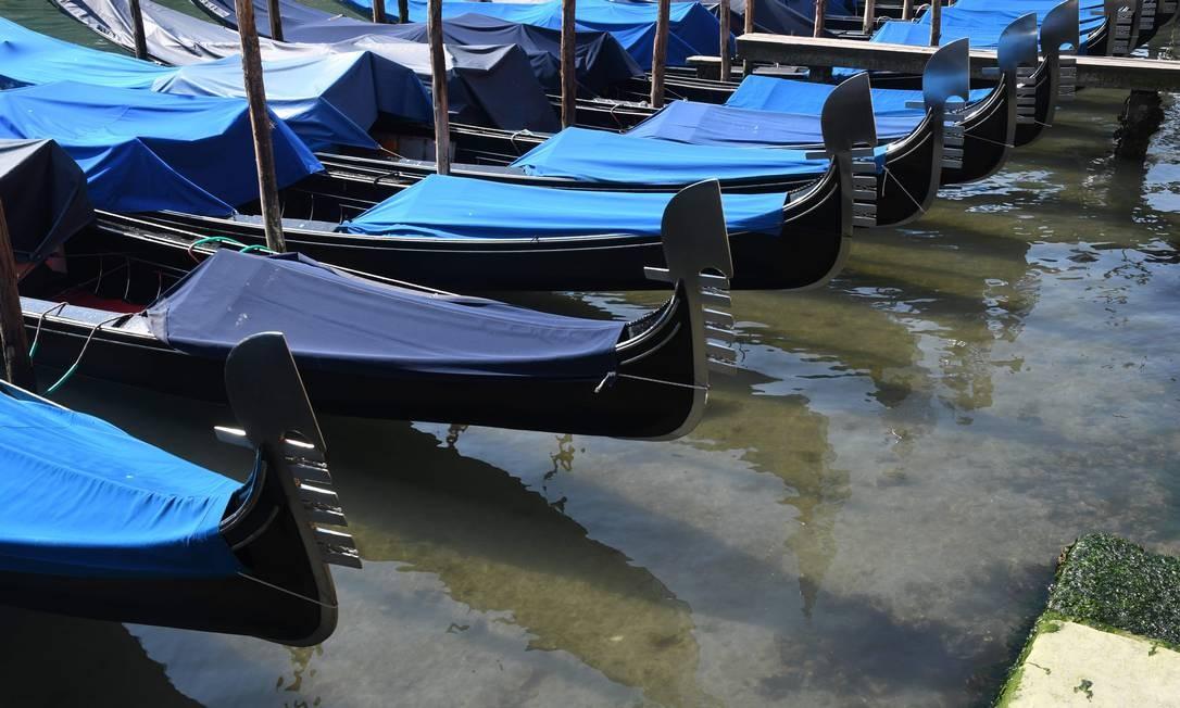 Águas mais claras é vista no Grande Canal de Veneza, perto da Ponte Rialto Foto: Andrea Pattaro / AFP