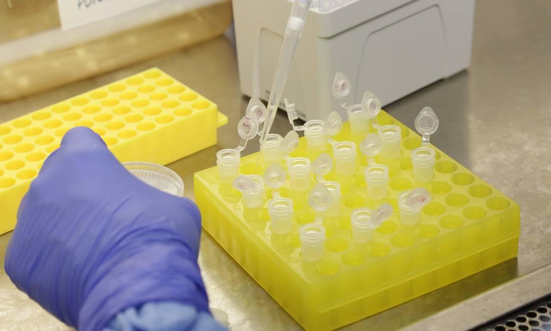 Laboratório de diagnóstico para coronavírus na Fiocruz Foto: Josué Damacena (IOC/Fiocruz)