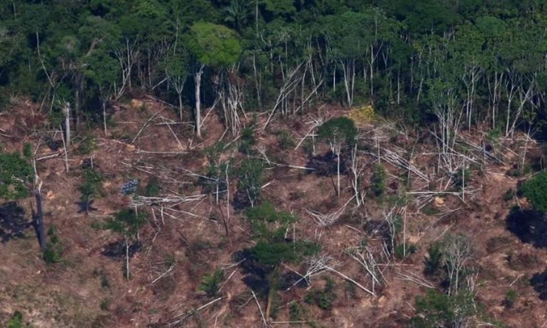 Desmatamento na Floresta Nacional Jamanxim, próximo a Novo Progresso (PA) Foto: Amanda Perobelli/Reuters