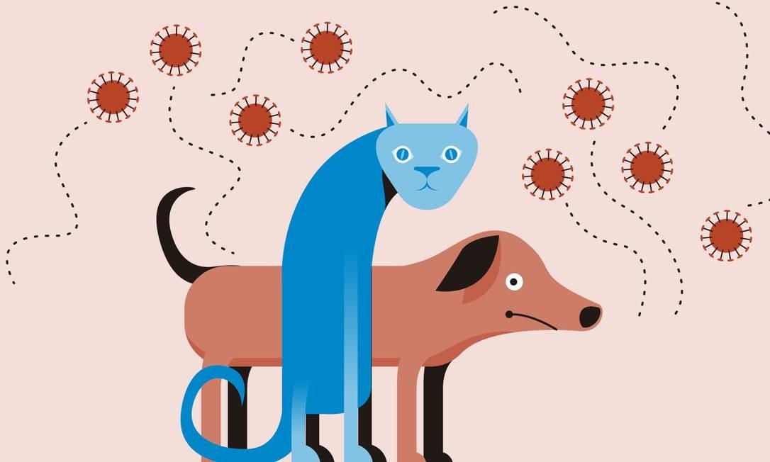 Saiba quais os cuidados tomar com os pets durante o isolamento Foto: Editoria de Arte