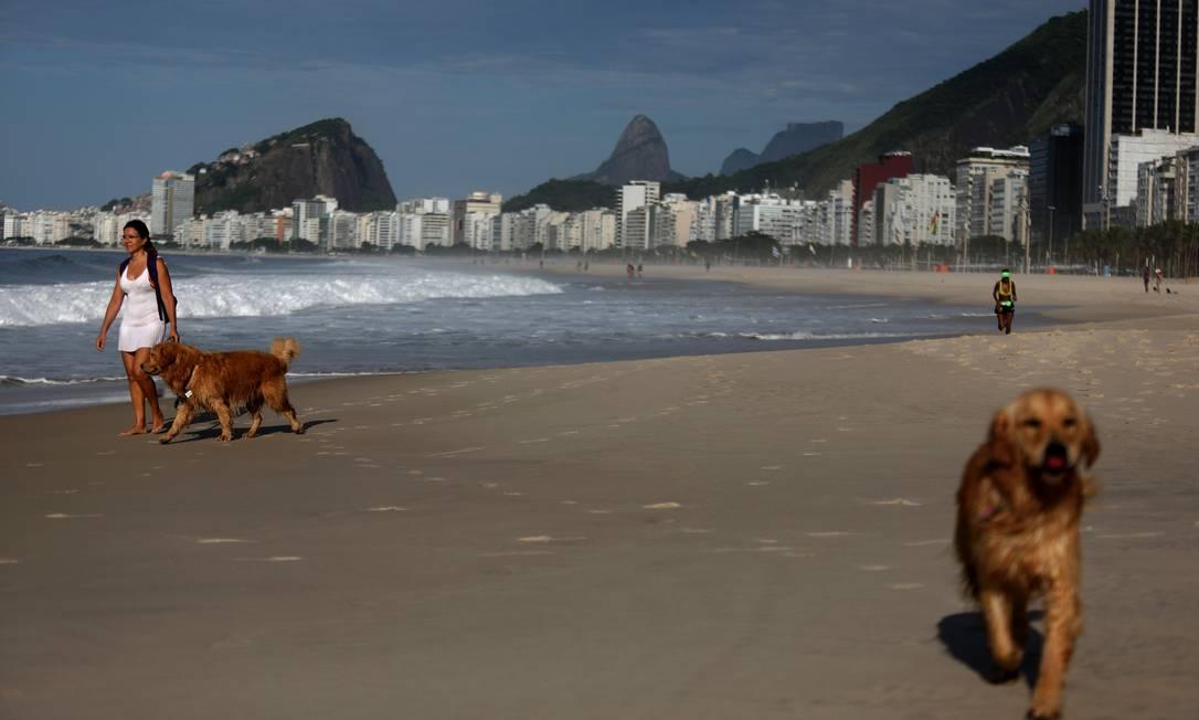 Com praias mais vazias, banhistas levaram cachorros para praia neste domingo Foto: Fabio Motta / Agência O Globo
