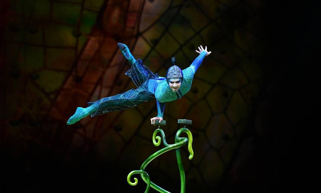 Cena do espetáculo 'Ovo', o último do Cirque du Soleil a ser apresentado no Brasil Foto: Cirque du Soleil / Divulgação