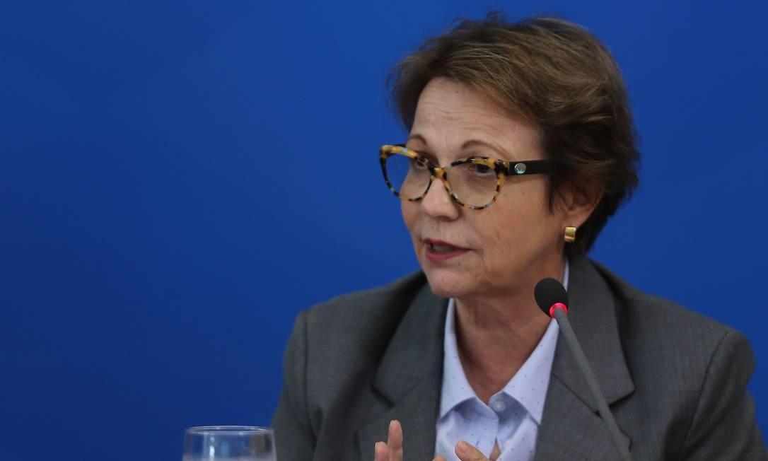 A ministra da Agricultura, Tereza Cristina 01-04-2020 Foto: Jorge William / Agência O Globo