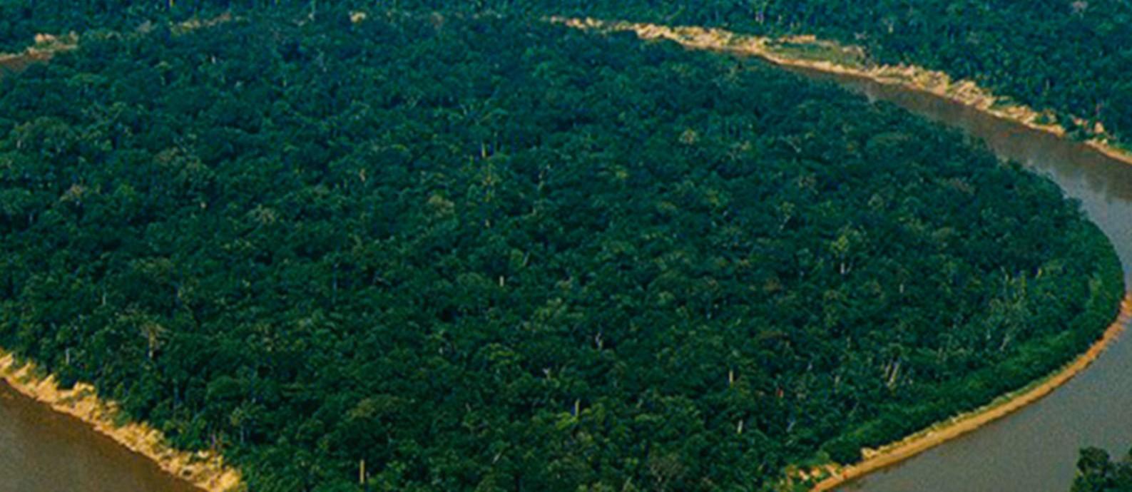 Vista área do Vale do Javari, onde missionários fizeram voos de helicóptero em plena pandemia de coronavírus Foto: Divulgação/Univaja
