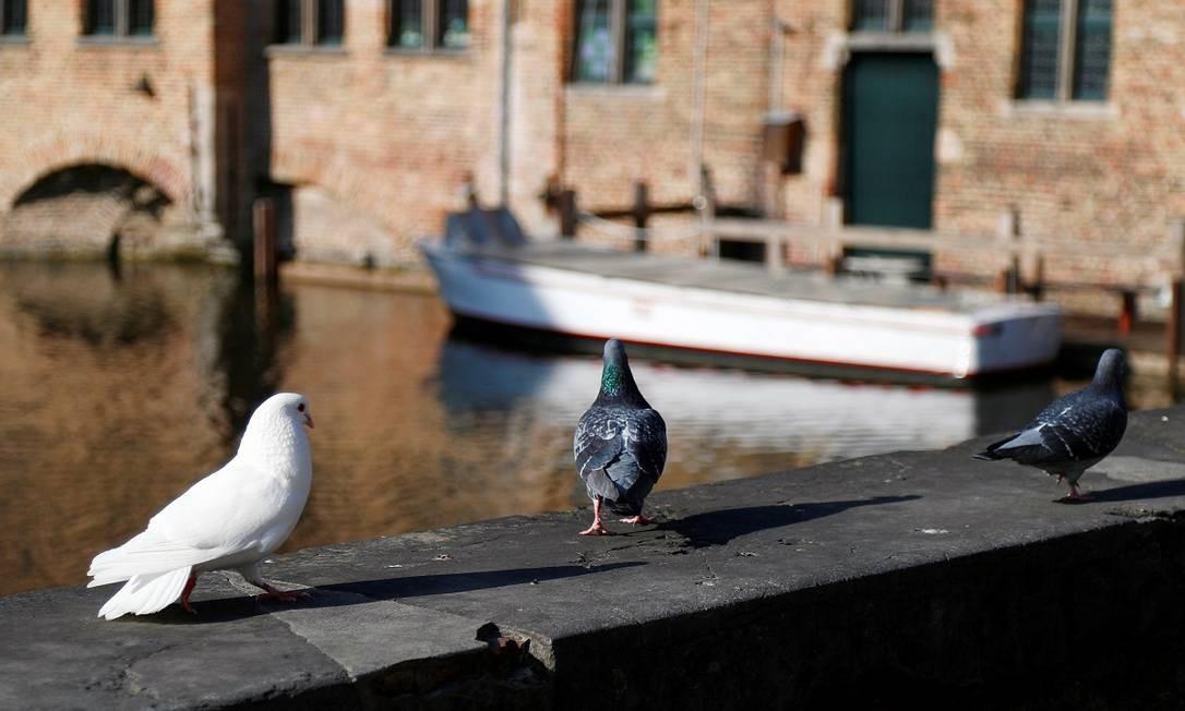 Apenas só os pombos ocupam alguns dos lugares antes lotados de turistas Foto: Francois Lenoir / Reuters