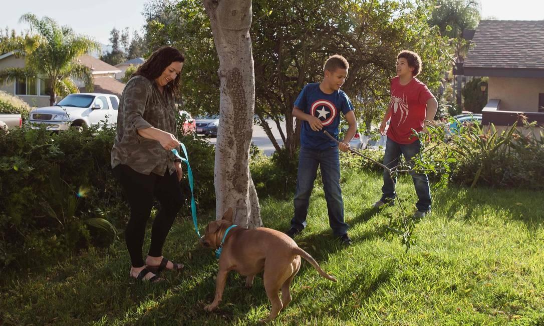Jalene Hillery e os filhos, Desean e Delonte, brincam com o pitbull Mase, adotado há uma semana pela família, que vive em Escondido, nos Estados Unidos Foto: ARIANA DREHSLER / AFP