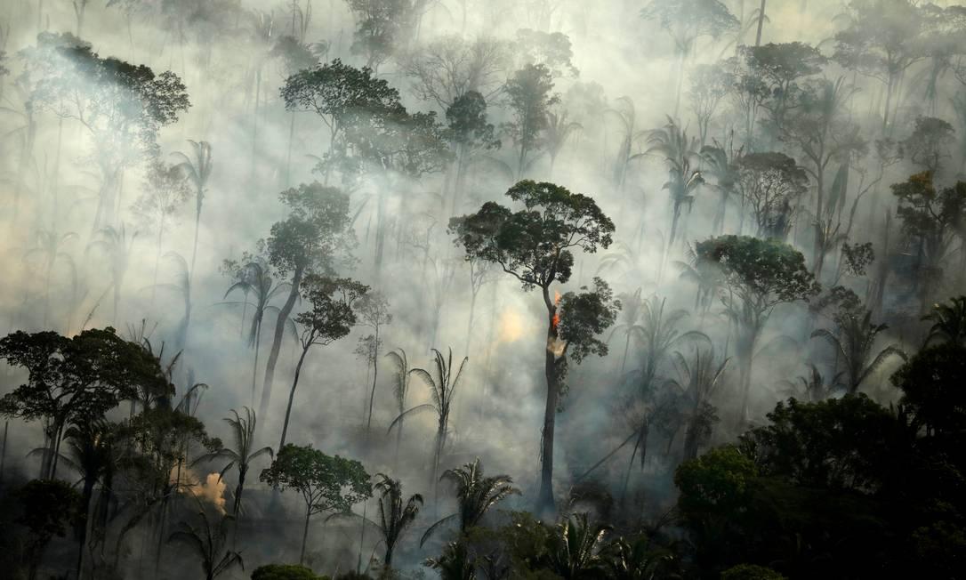Em 2019, a floresta amazônica sofreu com incêndios Foto: Bruno Kelly / REUTERS 10/07/2019