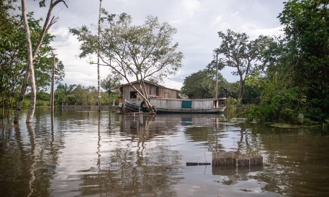 Território quilombola deTuré-III, em Acará, no Pará Foto: Cícero-Pedrosa/Amazônia Real