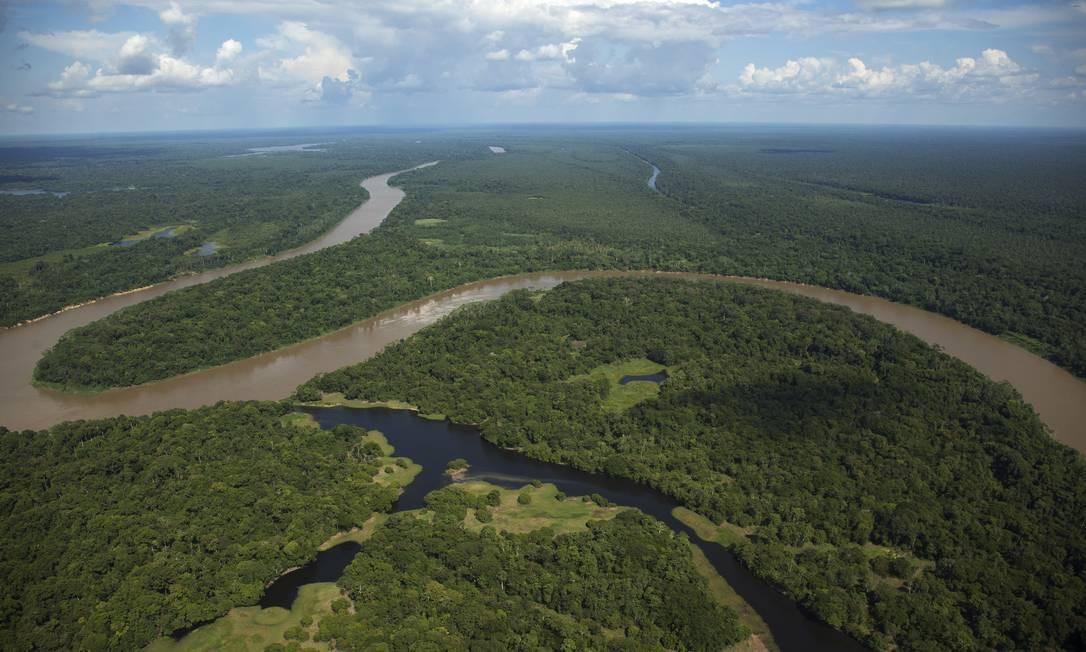 Concessão de floresta implica em conhecimento prévio do governo de uma série de fatores, como zoneamento da área que será explorada por terceiros e o estado de conservação da fauna Foto: Antônio Scorza/4-10-2014