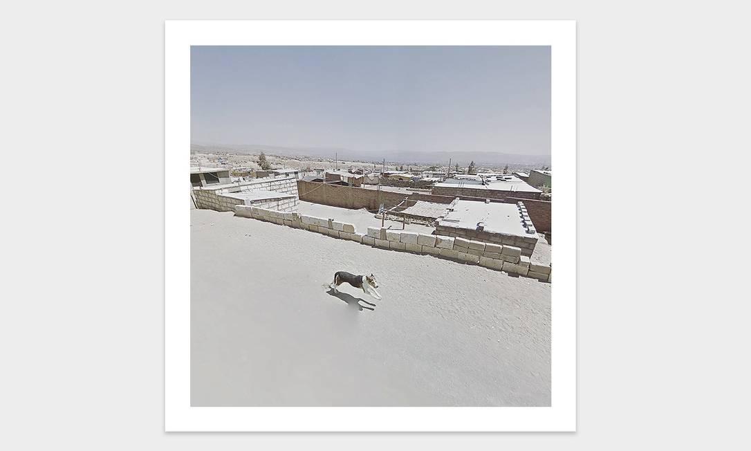 Foto de um cachorro no Peru tirada por meio do Google Street View Foto: Jacqui Kenny / Divulgação