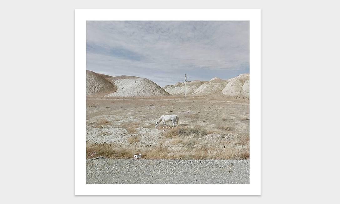 Cavalo branco no Quirguistão Foto: Jacqui Kenny / Divulgação