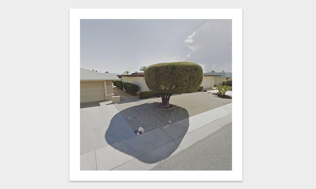 Sombra de árvore nos EUA Foto: Jacqui Kenny / Divulgação