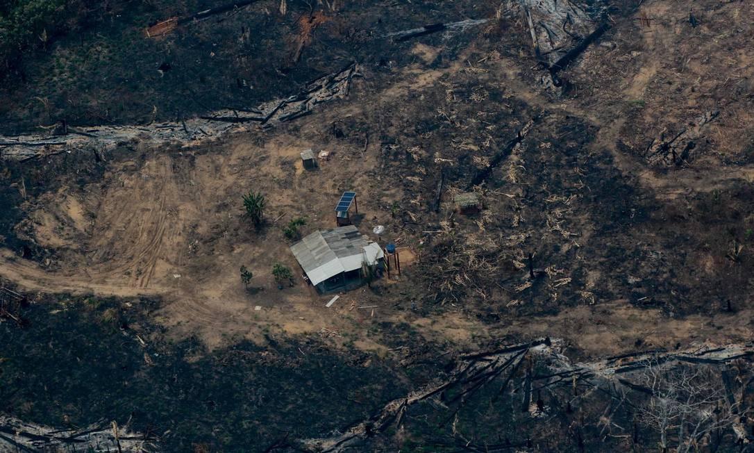 Desmatamento da floresta amazônica avançou em abril Foto: LULA SAMPAIO / AFP