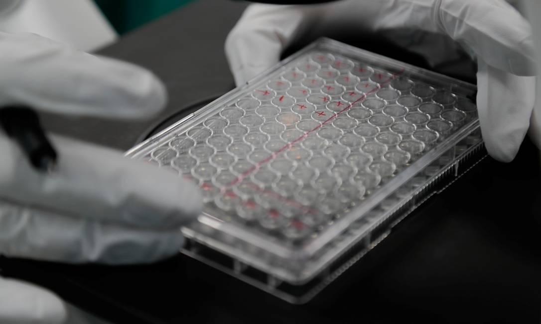 Laboratórios seguem na busca por um medicamento ou vacina eficaz no combate à Covid-19 Foto: Anton Vaganov / Reuters