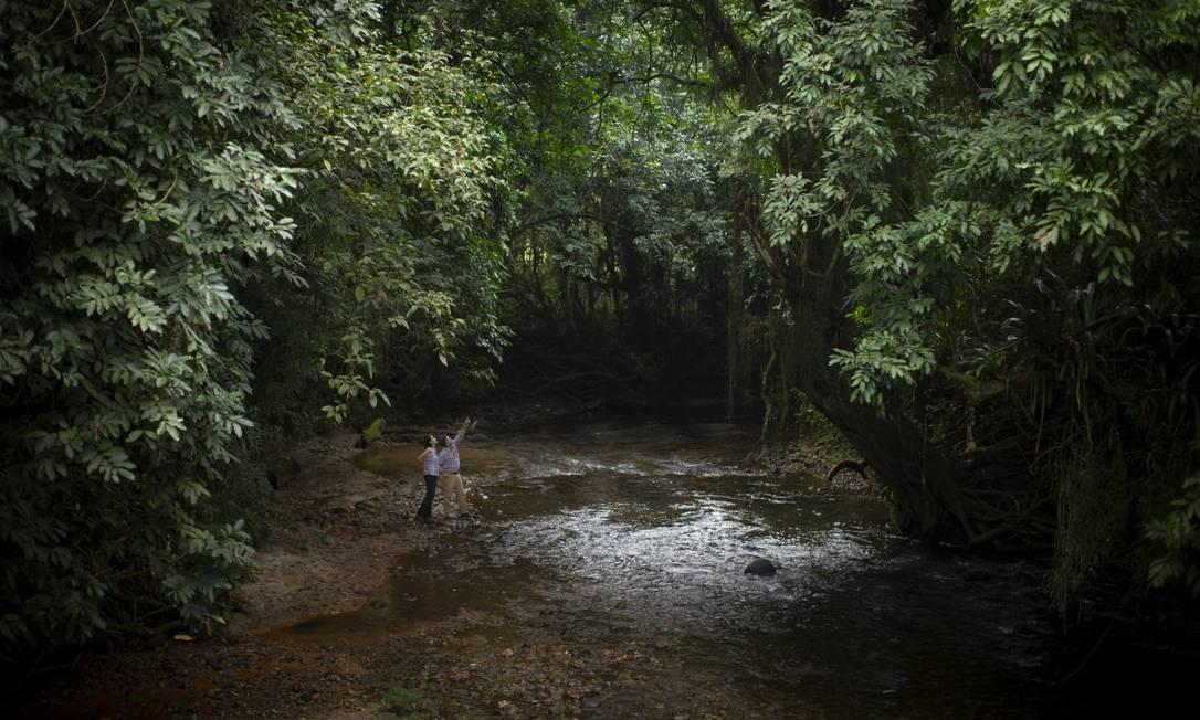 Reserva Biológica de Guapiaçu. A reserva é uma área particular que investe em reflorestamento e parcerias públicas e privadas. Na foto, Nicholas Locke, proprietário da terra transformada em reserva, junto ao limpo rio Guapiaçu Foto: Márcia Foletto / Agência O Globo