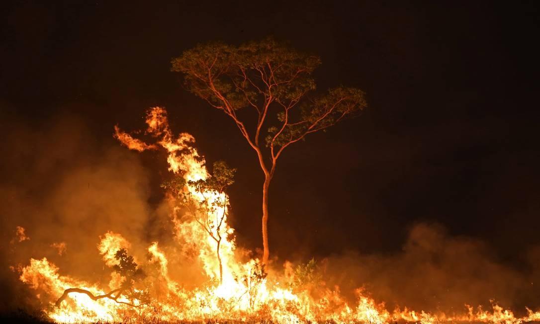 Queimada em reserva indígena no estado do Amazonas, em setembro de 2019 Foto: Bruno Kelly / Reuters