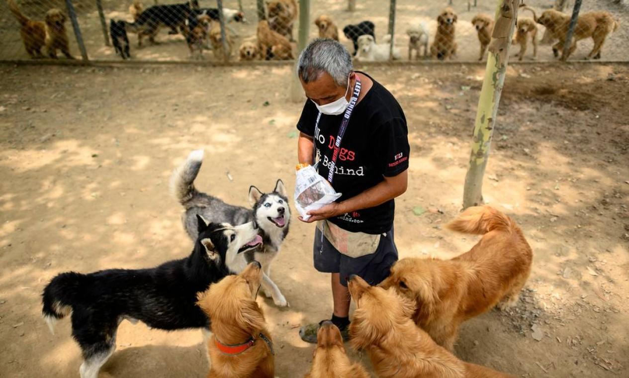 Suspeitas sobre origem do coronavírus levantou debate nacional sobre consumo de carne animal e fim do abate de cachorros pode acontecer com suporte legislativo Foto: NOEL CELIS / AFP