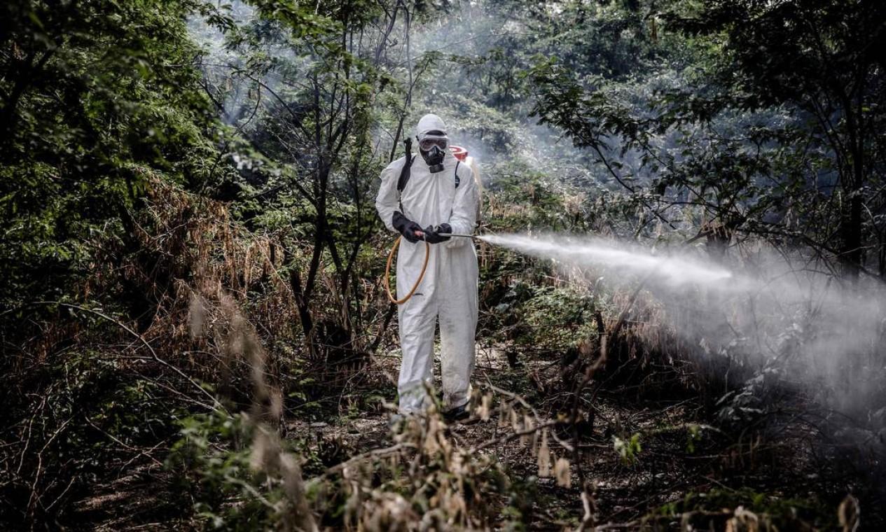 Membro do NYS pulveriza pesticidas em uma área infestada por gafanhotos do deserto em Lokichar, Turkana Foto: LUIS TATO / AFP