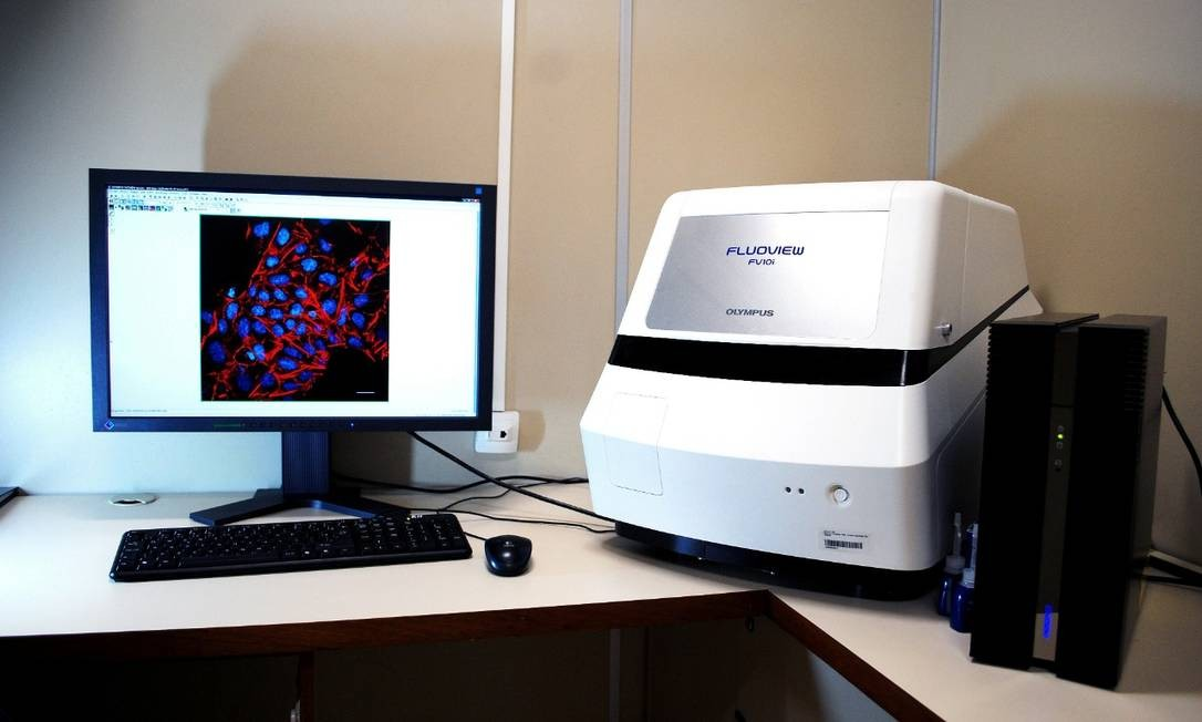 Laboratório de pesquisa no Instituto Nacional do Câncer (Inca) Foto: Instituto Nacional do Câncer (Inca)