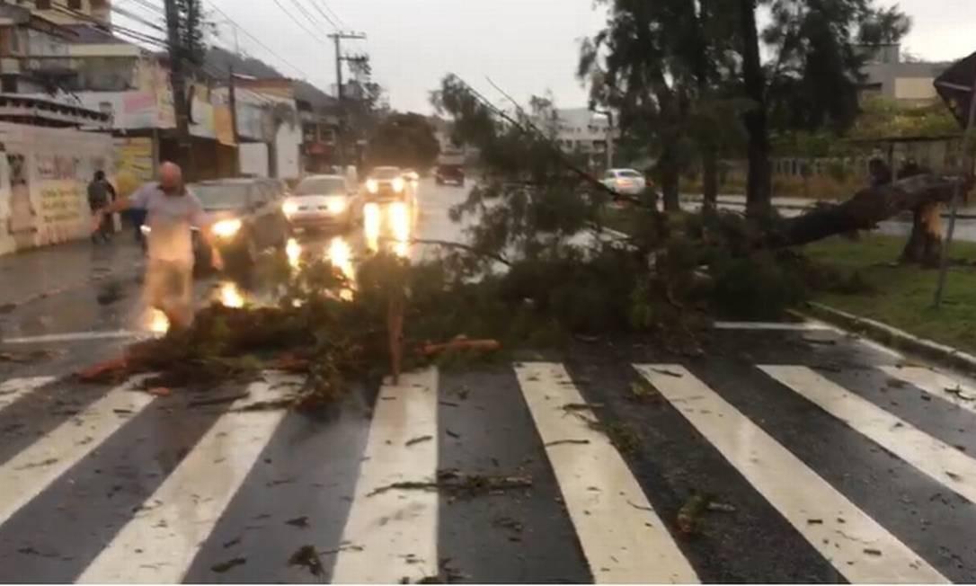 Fortes tempestades e ciclone bomba provocam estragos e deixam 3 mortos em SC Foto: Divulgação