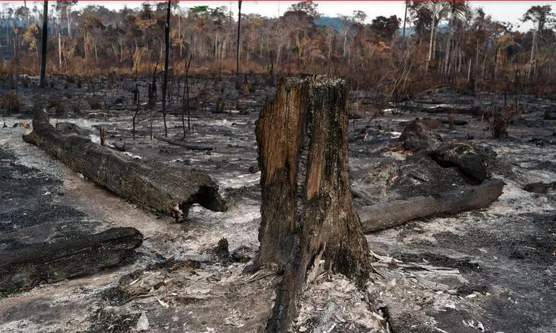 Destaque no jornal Le Monde para a volta das queimadas na Amazônia, que registraram em junho o maior número de focos dos últimos treze anos Foto: AP - Leo Correa