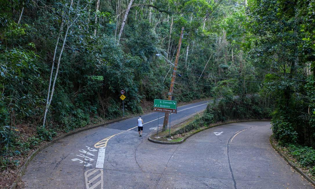 Parque Nacional da Tijuca reabriu para turismo nesta quinta-feira, dia 9 Foto: Brenno Carvalho / O Globo