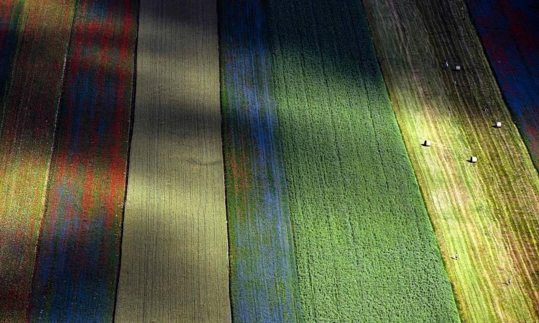 Imagem aérea mostra bem as faixas coloridas formadas pelas flores nos campos de Castelluccio de Norcia, na Itália Foto: TIZIANA FABI / AFP