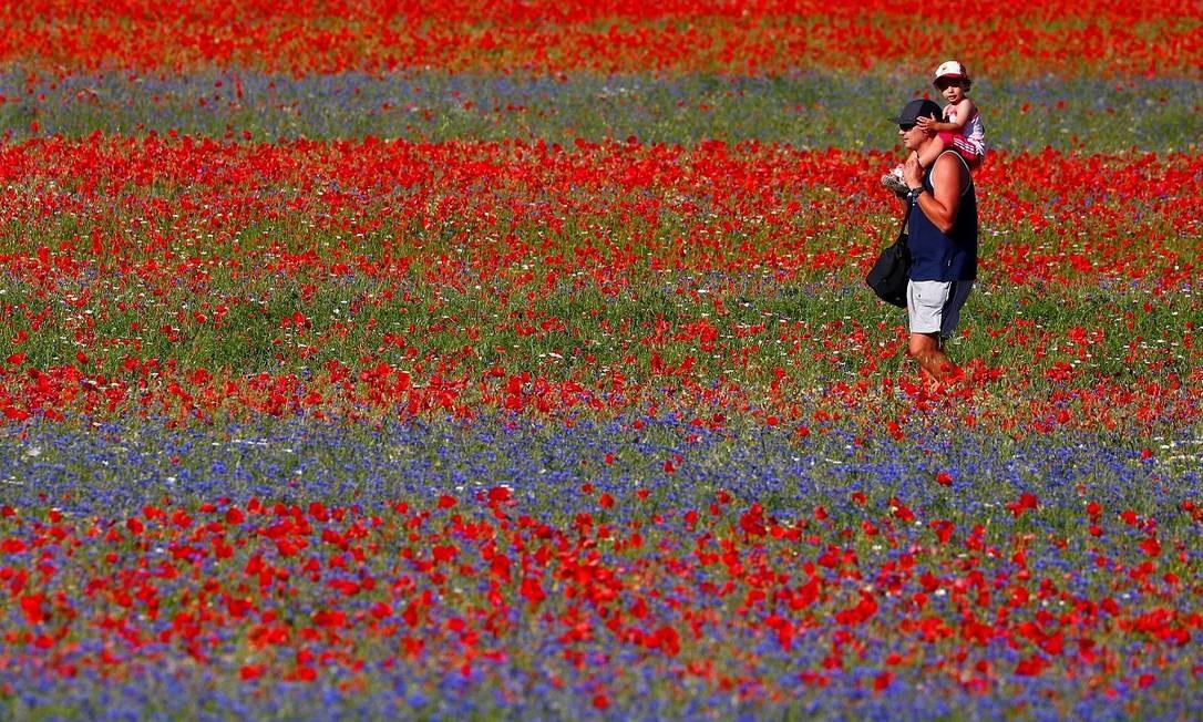 Um homem caminha com seu filho pelo campo de flores e lentilhas de Castelluccio di Norcia, na Úmbria, região central da Itália Foto: GUGLIELMO MANGIAPANE / REUTERS