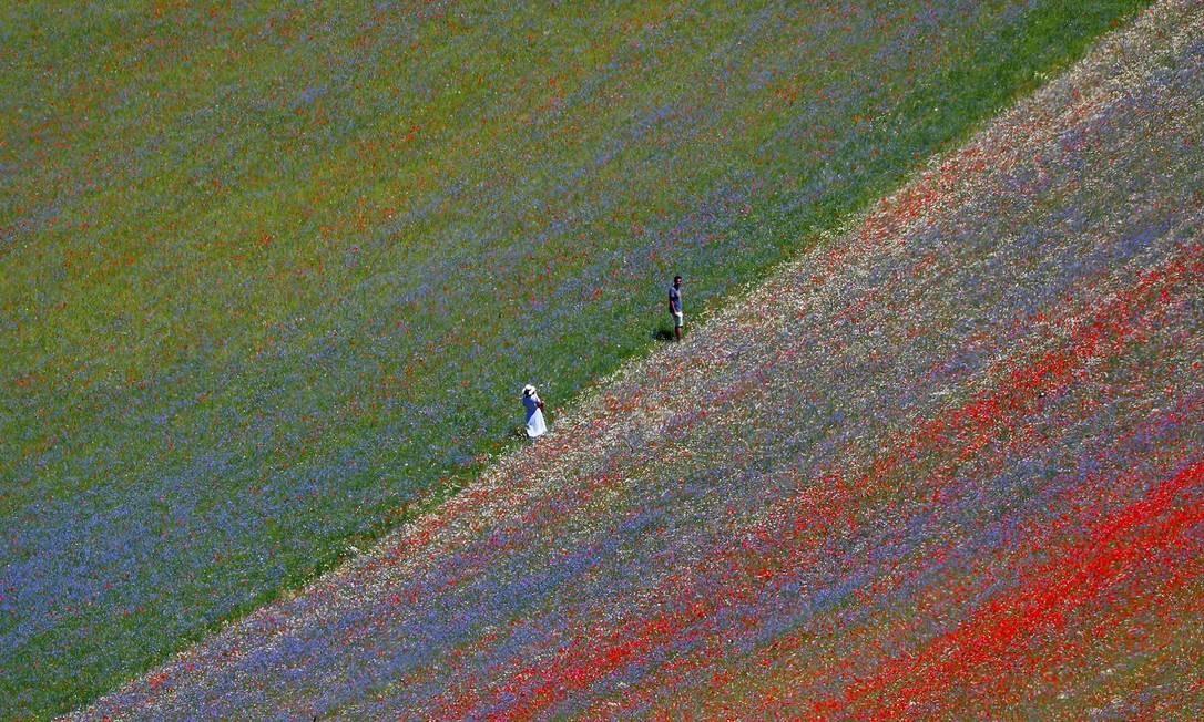 Turistas caminham pelos campos de flores e lentilhas de Castelluccio di Norcia, na Úmbria, região central da Itália Foto: GUGLIELMO MANGIAPANE / REUTERS